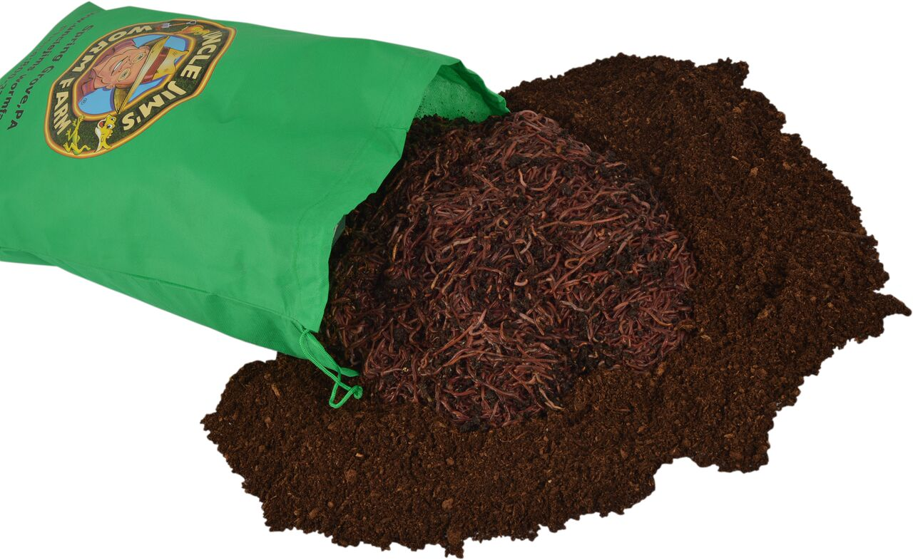5000 red composting worm mix uncle jim 39 s worm farm for Red worms for fishing